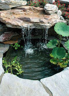 Un pequeño estanque simple es siempre divertido, sobre todo con unos pocos peces de colores calurosos días de Ake alguien con marrón en el jardín de sombra ..