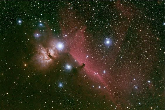 The horsehead nebula.