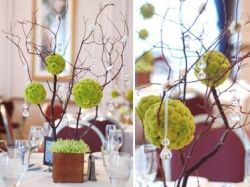 manzanita tree with pomander kissing wedding balls for gift table or name cards table
