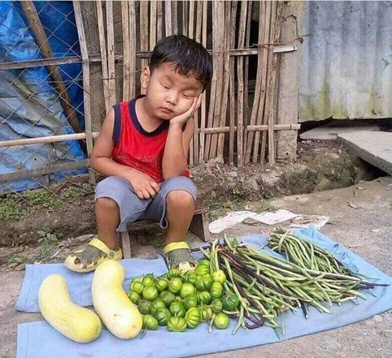 I Want to Buy Vegetables From This Cute Kid Too! Filipino Singer's Post is Getting Viral