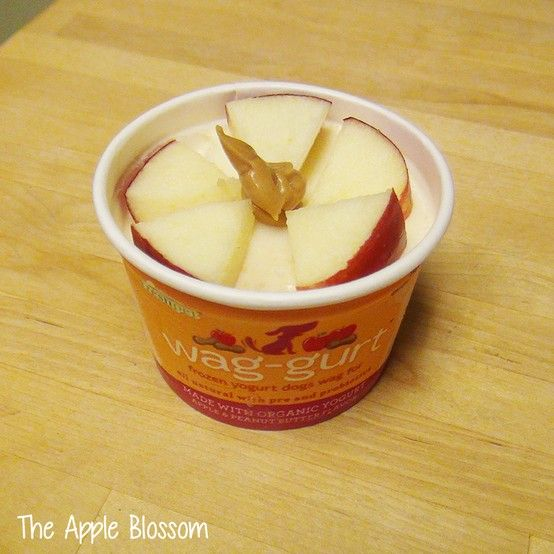 Your pup's taste buds will bloom for our Apple Peanut Butter Wag-gurt topped with apple slices and a dab of peanut butter. Yum!