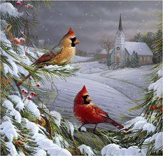 Pinterest the world s catalog of ideas - Winter cardinal background ...
