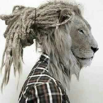 Lion hipster - photo#17