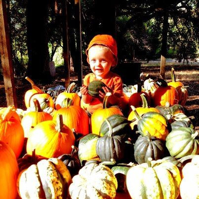 Planting a garden can give you this! Winter squash in the form of pumpkins, butternuts, acorns, and delicata's are wonderful for Fall festivities and the seasonal mood. Yummy too. Just look at all the wonderful recipes out there!