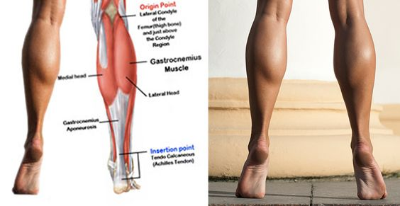 """If you are one of those people who are """"blessed"""" with bulky calves, then today workout is for you. I can understand how frustrating can be when you try to put a certain dress on and it's just emphasizing on your calves. And all you are trying to do is…"""
