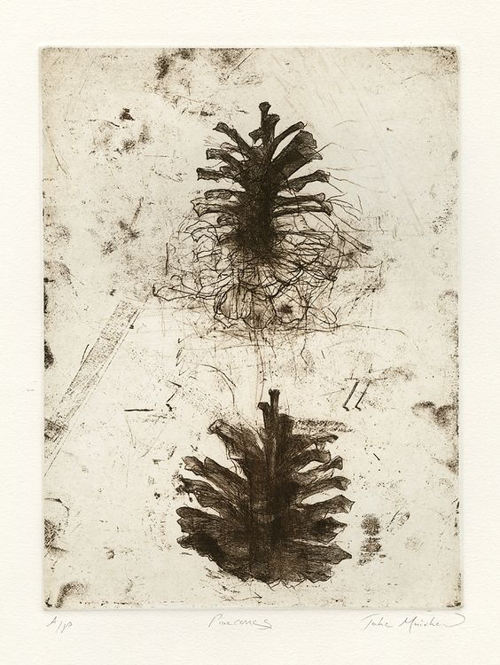 Jake MuirheadPinecones 2014 Softground etching and drypoint viaon Tumblr: