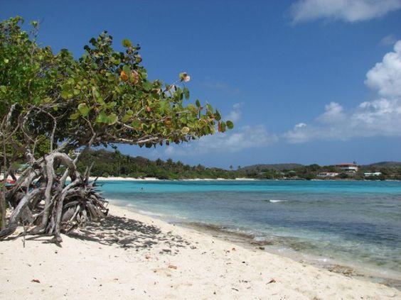Praia Safira, na Ilha de Saint Thomas, Ilhas Virgens Americanas. A praia tem corais com bastante vida e é um bom lugar para os adeptos do snorkel. A praia é tranquila, areia bem branquinha e as águas cristalinas.  Fotografia: http://www.aprendizdeviajante.com