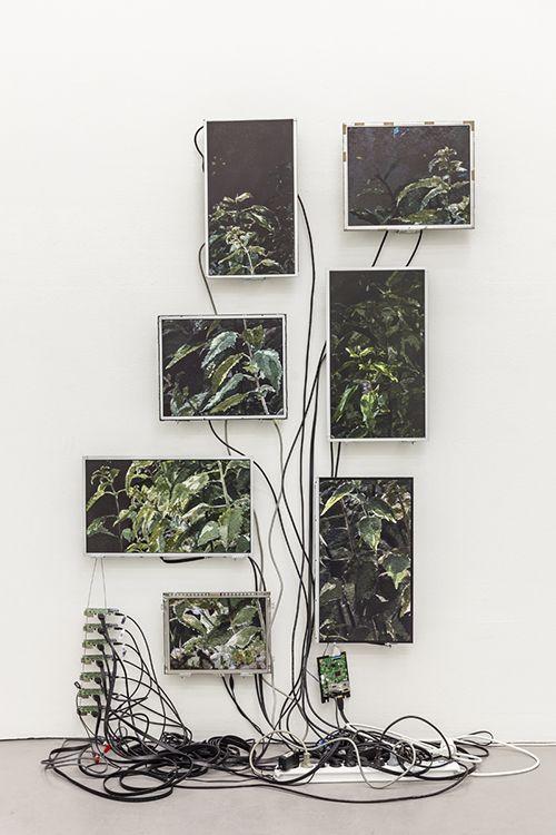 Christine Ödlund, Admiral's Garden. Videoinstallation: seven monitors, seven single-board computers
