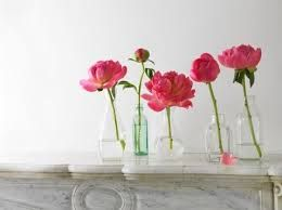 bistro table flower - Google Search
