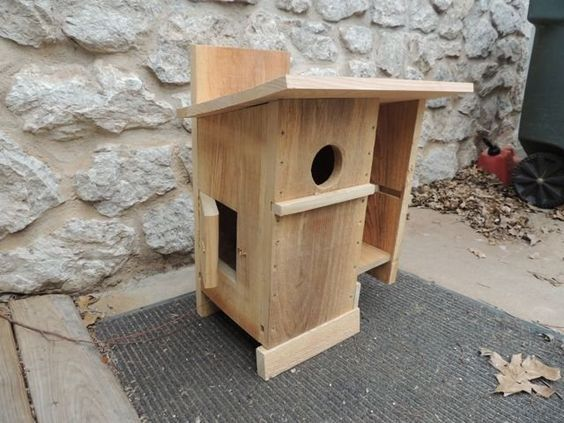 Squirrel House squirrel Pinterest House plans Squirrel and