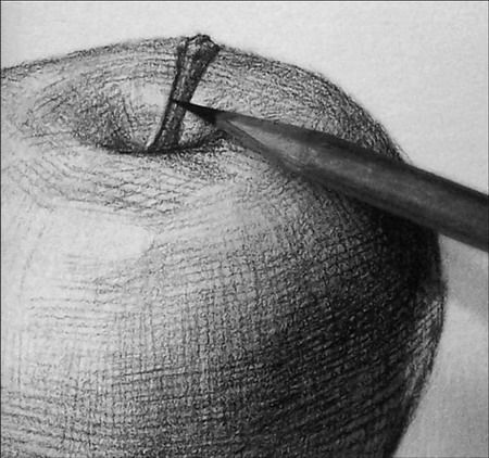 how to draw an apple with shading step by step