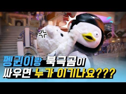 Ep 41 본격 남과 북의 대결 너네 북극곰과 펭귄이 싸우면 누가 이기는지 알아 Youtube