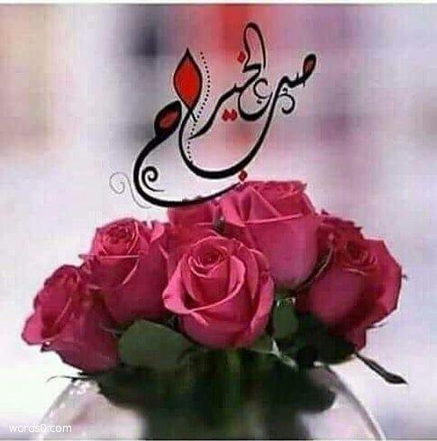 رمزيات صباح الخير صور مكتوب عليها صباح الخير موقع كلمات Rose Morning Love Quotes Good Morning