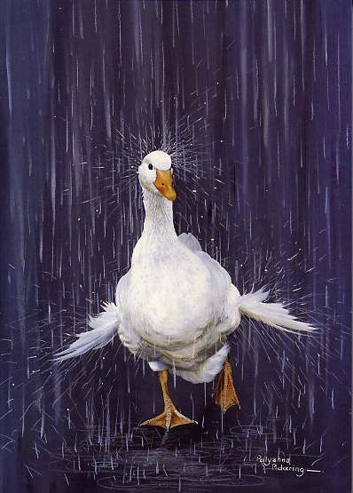 Pollyanna Pickering - Wildlife Art gallery