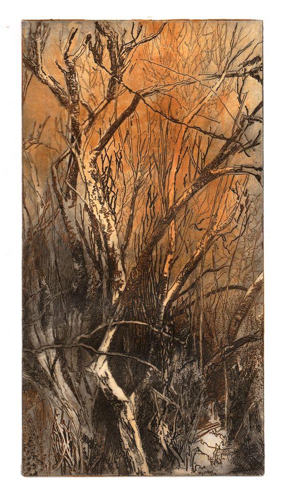 Etching, birches