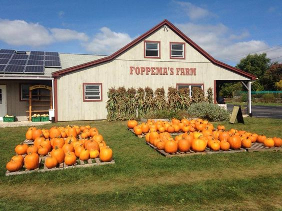 Foppema's Farm Northbridge MA.