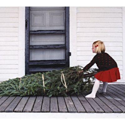 bippity boppity boo #Christmas