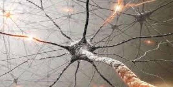Investigadores trabajan por mejorar memoria de pacientes con Alzheimer y otras demencias