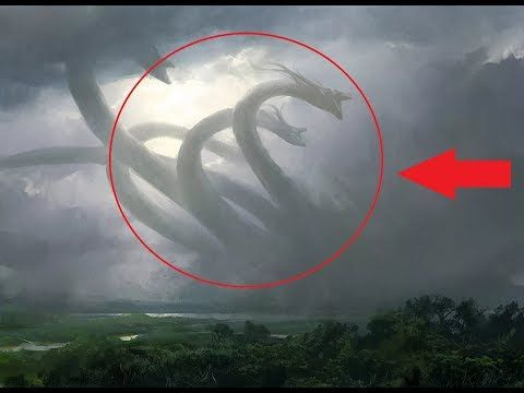 10 Giant Creatures Caught On Camera Spotted In Real Life Youtube Real Life Creatures Giants