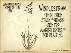 windlestraw