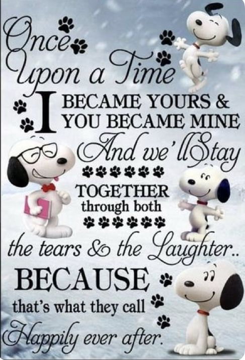 Pin by Kar3n.59 on Snoopy & The Gang | Snoopy quotes, Snoopy ...