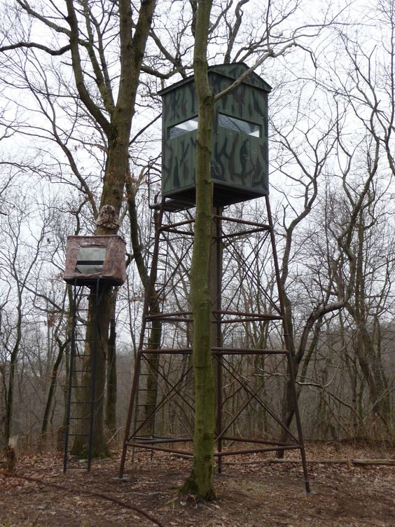 Hunting blind tree stand custom built sheds pinterest for Tree stand blind ideas