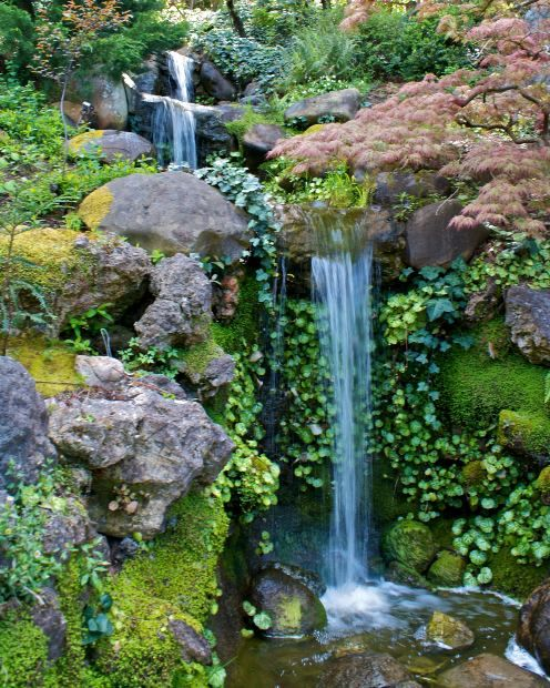 Fern Grotto- Kauai, Hawaii.