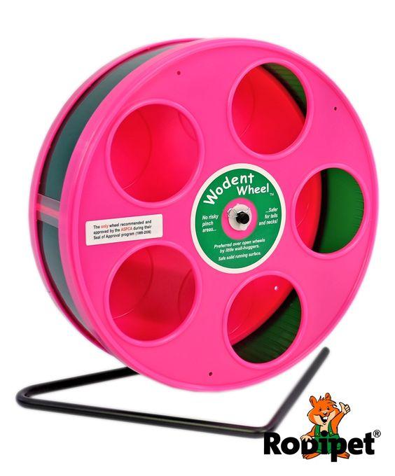 Ø 20 cm Laufrad für Zwerghamster RoboWheel pink/grün