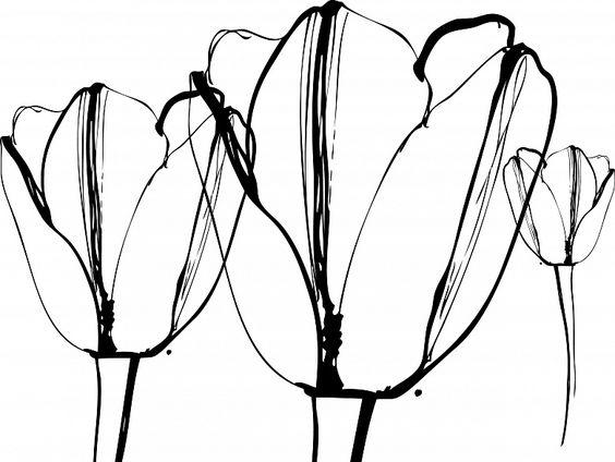 Tulpen #wallpaper