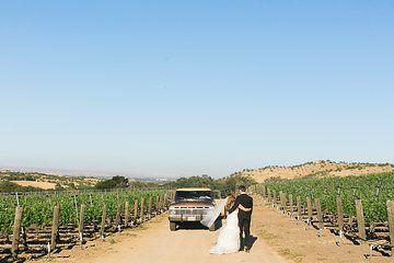 Morse_wedding_favorites-50.JPG