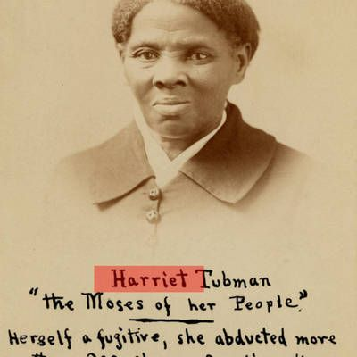 harriet single women Home black women authors book lists must read books 18 books every black woman should have on her book shelf must read books 18 contributor to for harriet.