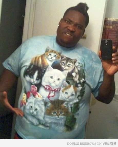 love cats? Ahahahahahaaa!