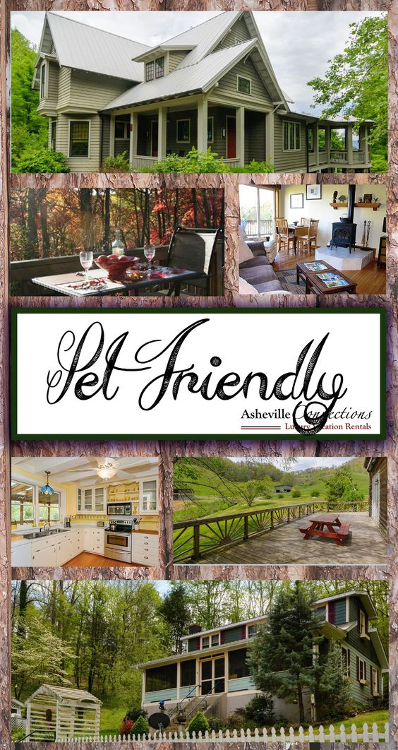 Why Look For Pet Friendly Hotels In Asheville When These Fabulous Vacation Als Are Available All About Pinterest