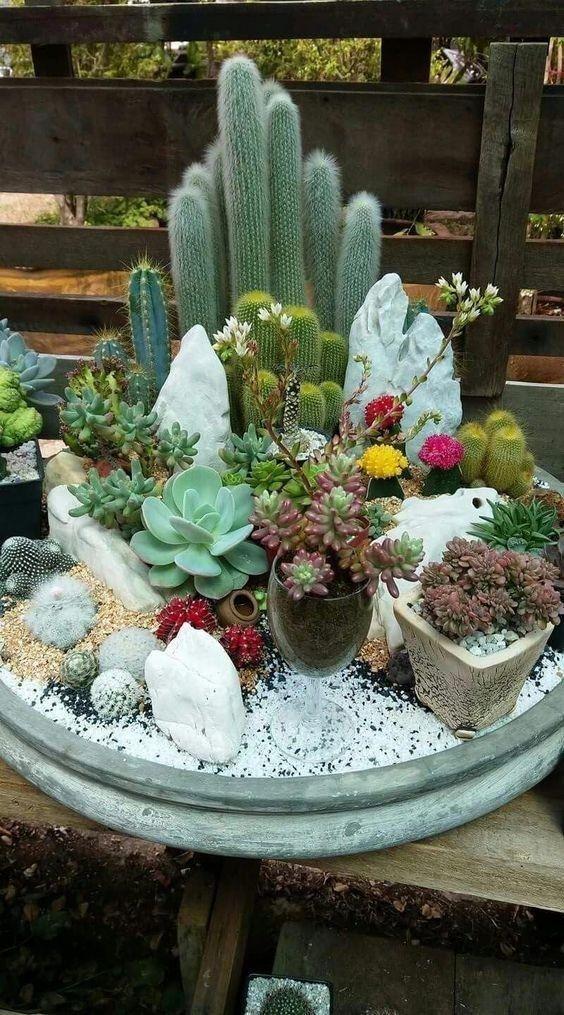 24 Beauty Cactus And Succulent Garden Ideas For Indoor 6 Talkinggames Net Succulent Garden Diy Mini Cactus Garden Succulents Garden