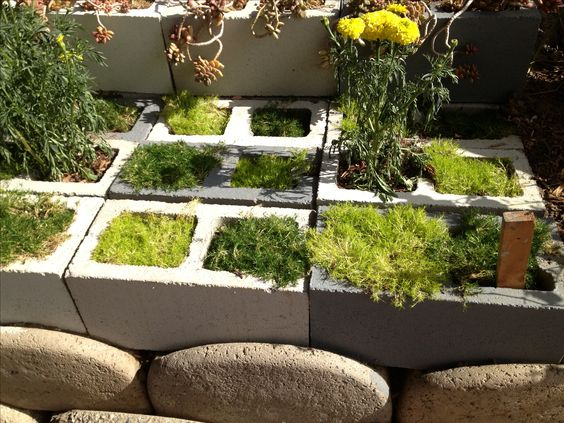 Repurposed cinder blocks made into a succulent garden for Cinder block pond ideas