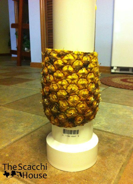 Making a Pineapple Tree Fruit   Build a Pineapple Palm Tree