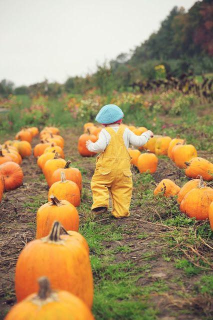 Miss Ella Sky -Fall/Pumpkin patch