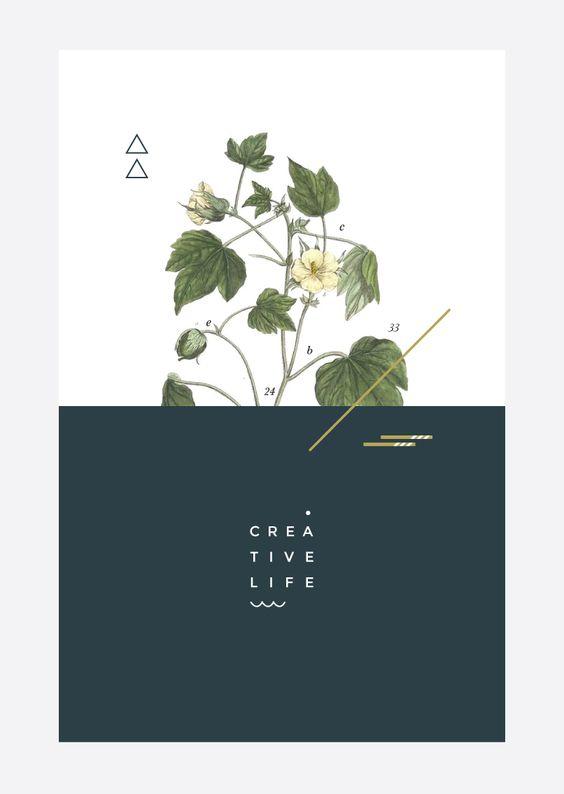 Design Resources | Irene Victoria | Toronto Freelance Graphic Designer