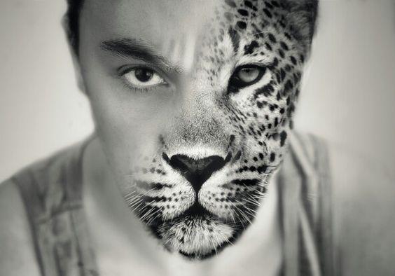 #bw #blackandwhite #canon #50mm1.8 #leopard #fineart