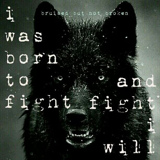Warriors Fire And Ice Word Count: Bruised And Broken... I Was Born To Fight, And Fight I