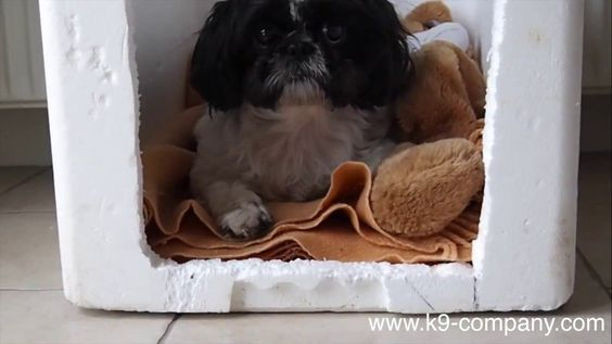 How To Soundproof Box For Dogs Soundproof Box Sound Proofing