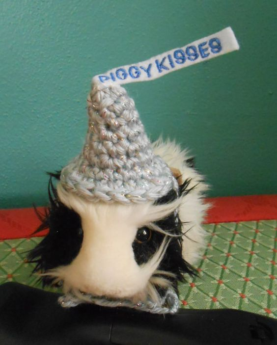 Guinea Pig Candy Kiss Hat Valentine Hat for Guinea by Fancihorse