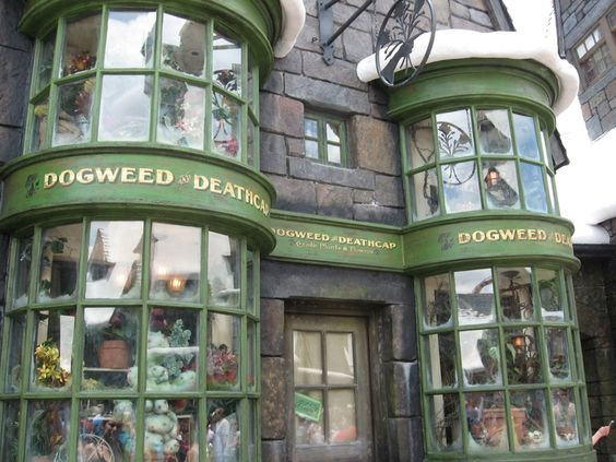 Vintage shops store fronts and shop ideas on pinterest for Shop with apartment above