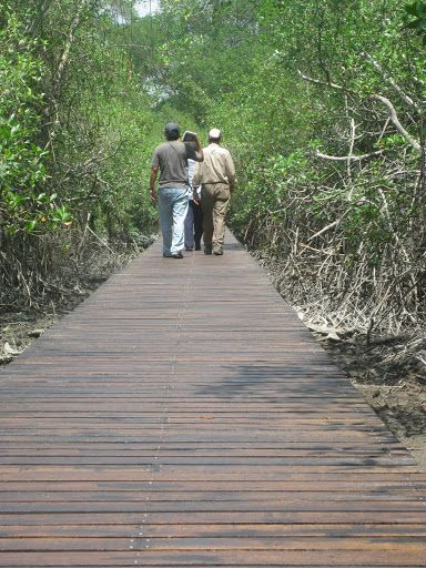 Walking trails outside Guayaquil