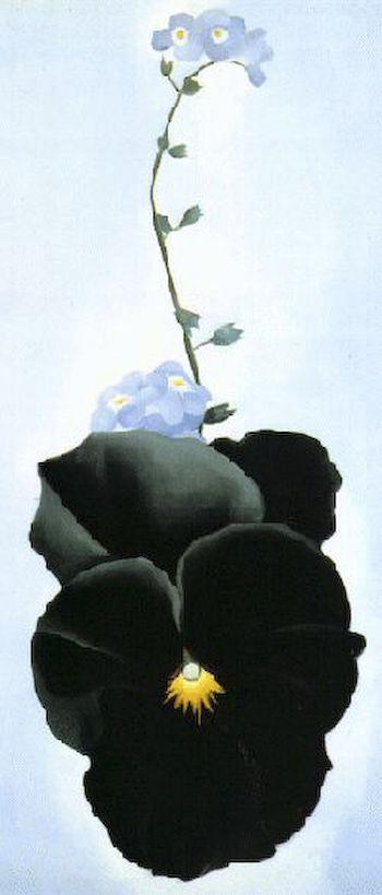 Georgia O' Keeffe - Black Pansy