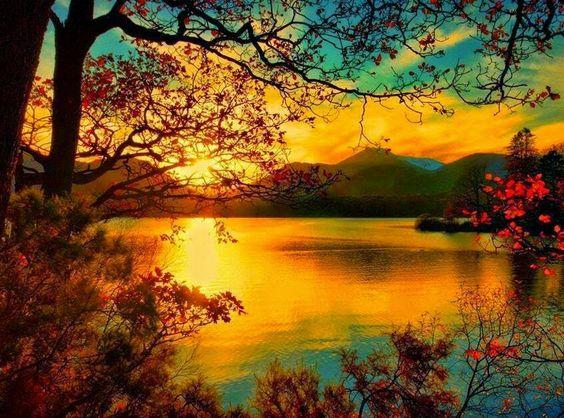Nature & beauty