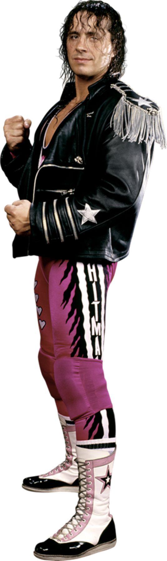 Bret Hart Stats Png By Darkvoidpictures On Deviantart Professional Wrestling Training Center Pro Wrestling