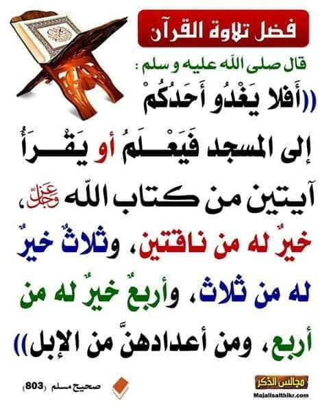 Pin On Prophet Muhammad