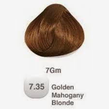 Resultado de imagen para cuales son los castaños claros chocolates de majirel