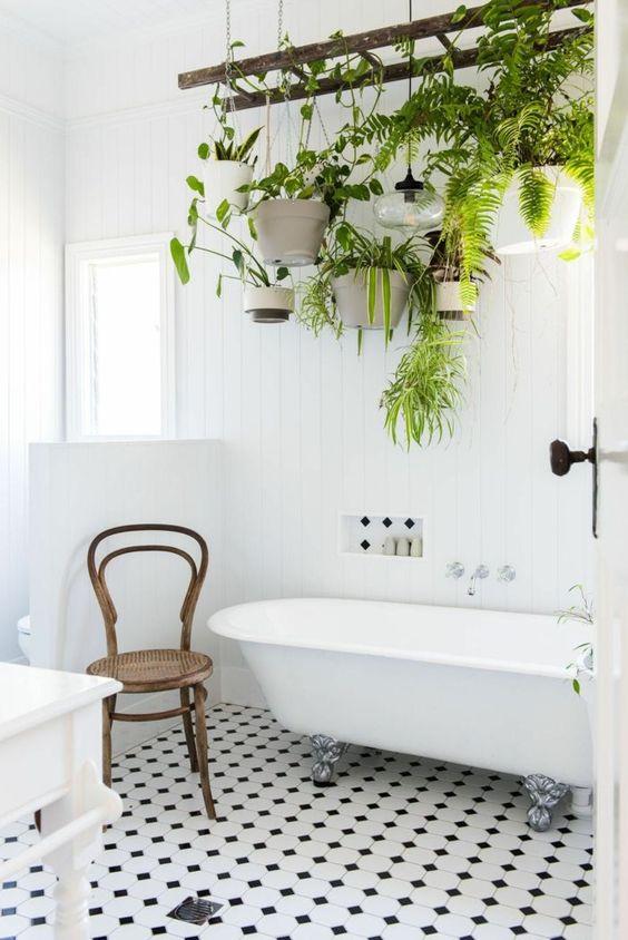 carrelage en blanc et noir en style échiquier, porte-plante suspendu sur une vieille échelle de bois, une dizaine de pots blancs avec des plantes vertes, plante interieur, pinterest salle de bain